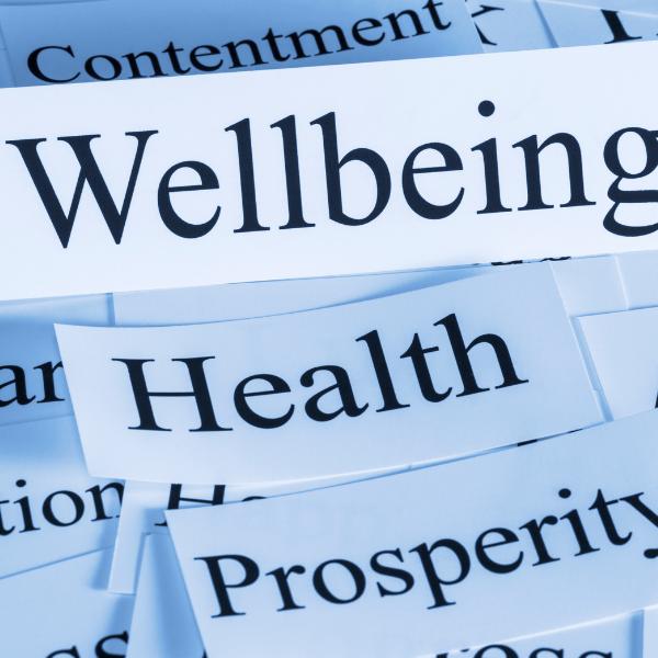 Mental Wellbeing